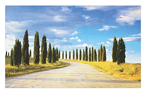 Ambesonne Italian Doormat, View of Earth Road Path Between Trees Row in Mediterranean Historic Culture, Decorative Polyester Floor Mat with Non-Skid Backing, 30 W X 18 L Inches, Cream Green Blue