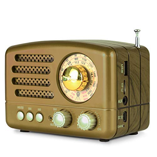 M-160BT Retro Bluetooth Speaker Portable AM/FM/Shortwave Rechargeable Radio, Supports TF Card/Aux/USB MP3 Player, by PRUNUS(Gold)