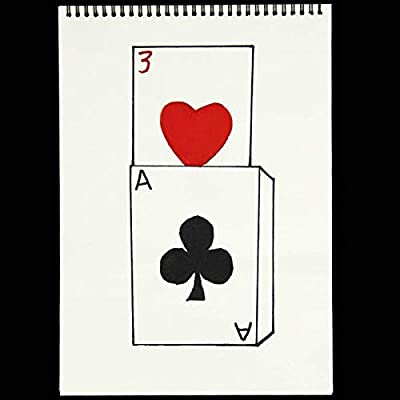 Doowops Cardiographic Exclusive Rise Card Prediction( 390×260MM ) Magic Tricks Magician Stage Illusions Gimmick Props Mentalism Magic: Toys & Games