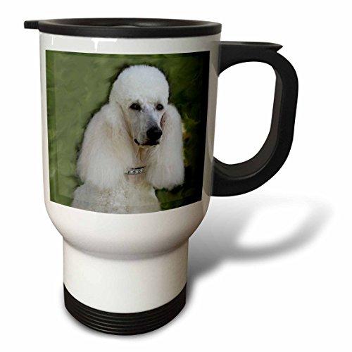 3dRose Standard Poodle Travel Mug, (Poodle Travel Mug)