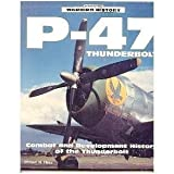 P-47 Thunderbolt : Combat and Development History of the Thunderbolt, Hess, William N., 0879388994