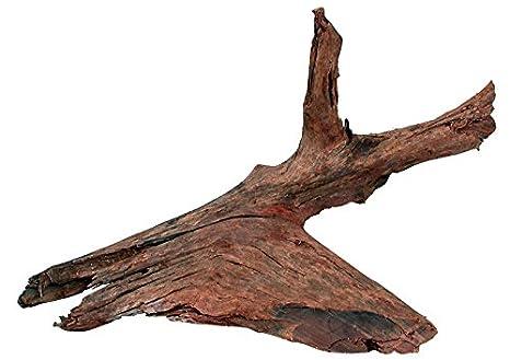Zolux Mangrove Racine pour Aquariophilie 25/40 cm 0400.0356030