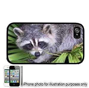 Raccoon Photo Apple iPhone 4 4S Case Cover Black hjbrhga1544