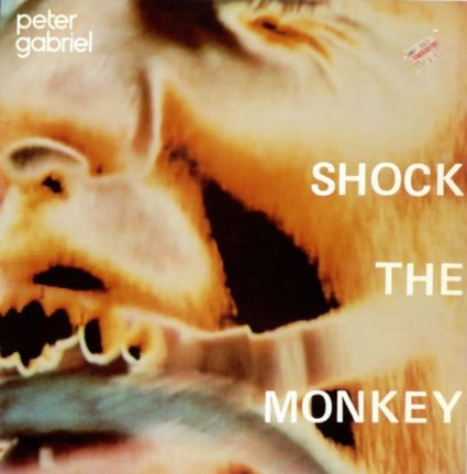 shock the monkey / soft dog 12