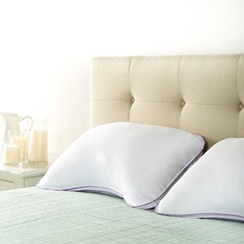 Zinus Sleep Master Ultima Comfort Memory Foam: Zinus Deluxe Ultima Memory Foam Shoulder pillow ...