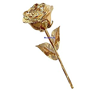 HEALTHNODE Real Rose Premium 24K Gold Dipped Rose in Beautiful Velvet Gift Box Best Unique Gift for Husband Wife Mom Dad Mother Valentines Day Wedding Anniversary Birthday Easter (11 Inches) 72
