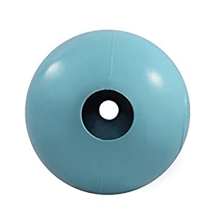 Dog Toys Balls - Tough Nearly Indestructible Toy for Aggressive Chewers - 2 Ball Sizes for Large and Small Dogs - Made in USA (Powder Blue 4 inch ball)