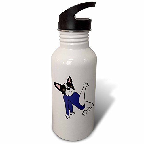 21 Boston Bottle (3dRose All Smiles Art Pets - Funny Cool Boston Terrier Puppy Dog doing Floor Exercises - Flip Straw 21oz Water Bottle (wb_263922_2))