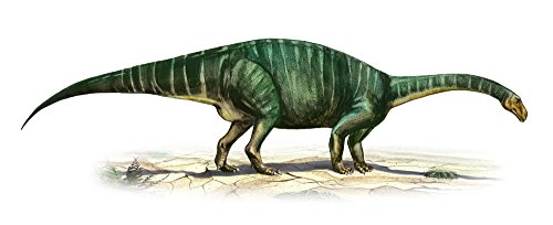 Posterazzi Plateosaurus engelhardti a prehistoric era dinosaur from the Late Triassic period Poster Print (44 x 17) (Dinosaurs Triassic Period)