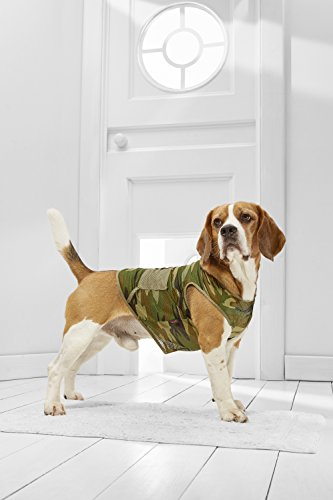 Medium Dog Camo Tank Top Vest For Beagle Poodle Boston Terrier Cocker Spaniel (Medium Plus Size, green, black, olive, (Australian Plus Size Halloween Costumes)