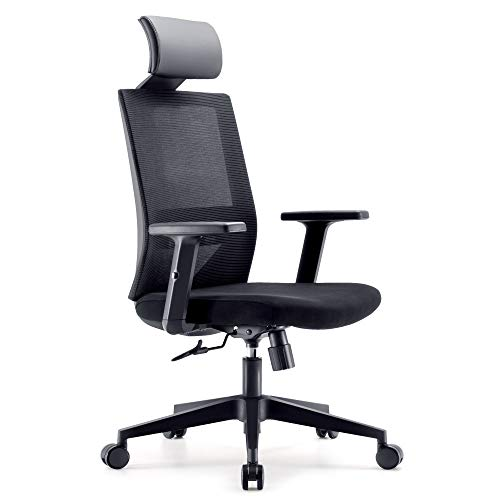 SIHOO M72-M101 Ergonomics Office Computer Desk Chair, Adjustable Headrests Chair Backrest and Armrest s Mesh Chair Black