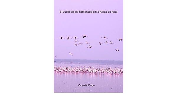Amazon.com: El vuelo de los flamencos pinta África de rosa (Spanish Edition) eBook: Vicenta Cobo, V Cobo: Kindle Store