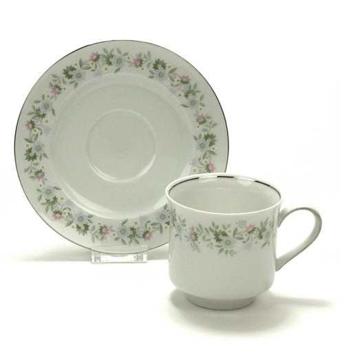 Bavarian China Dishes - Forever Spring by Johann Haviland, China Cup & Saucer
