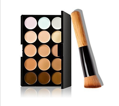 Foundation Set (15 Colors Makeup Concealer Foundation Cream Cosmetic Palette Set Tools with)