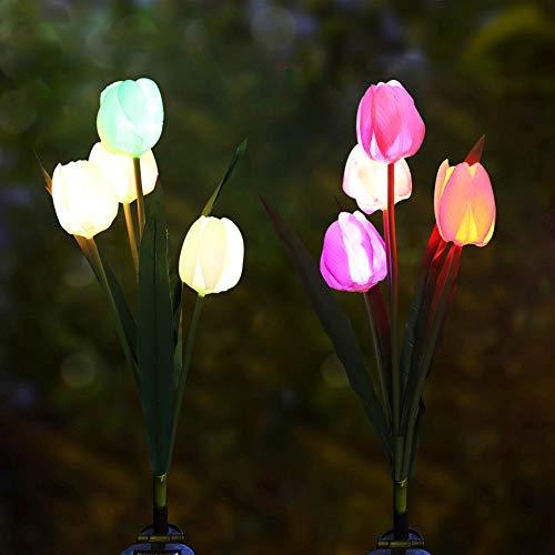Solar Tulip Garden Lights in US - 3
