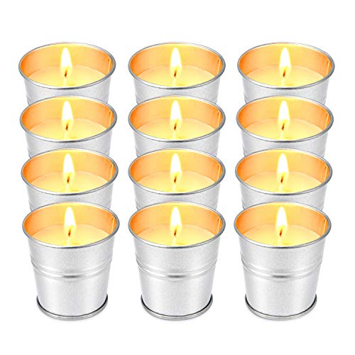 Hausware Citronella Candle Outdoor and Indoor Soy Wax Candle Set of 12 Pack