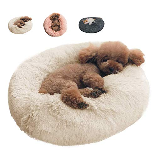 BinetGo Dog Bed Cat