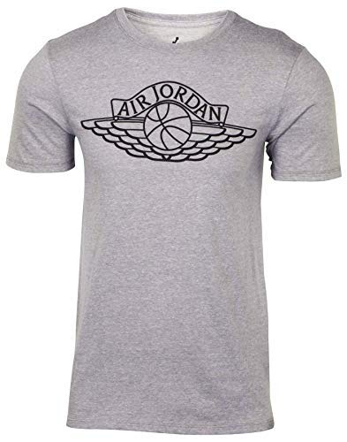 (Nike Jordan Men's Wings Brand T-Shirt-Heather Grey-Large)