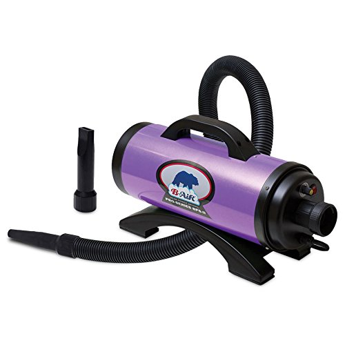 Grizzly B-Air, Pro Series II Dryer, Purple