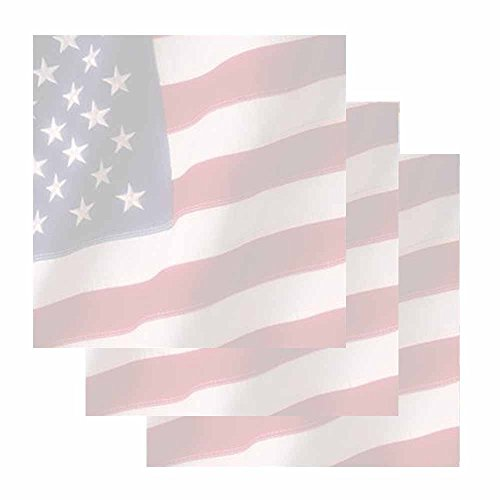 - American Flag Sticky Notes - Set of 3 - Patriotic Theme Design - Stationery Gift - Paper Memo Pad - Office Business School Supplies