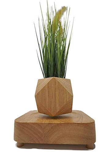 Floating Flower Pot - Micro Landscape Gardening Levitating Magnetic Floating Air Bonsai Pot (Dodecahedron) with Artificial Onion Grass