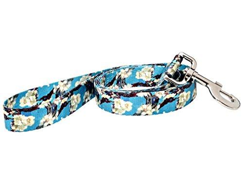 DoggyRide Fashion Dog Leash, 5-Feet, Van Gogh Almond Blossom, Turquoise/Cream