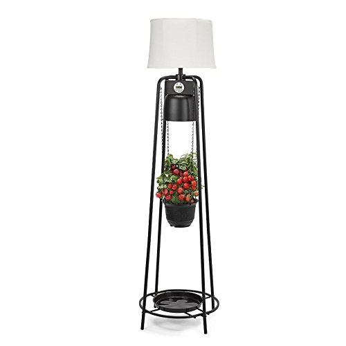 Catalina Lighting Glo Gro 45-Watt LED Grow Light, Étagère Floor Lamp with Adjustable Plant Housing and Integrated Timer, Black, 20745-000 by Catalina Lighting (Image #8)'