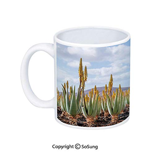 Plant Coffee Mug,Photo from Aloe Vera Plantation Medicinal Leaves Remedy Fuerteventura Canary Islands Decorative,Printed Ceramic Coffee Cup Water Tea Drinks Cup,Multicolor