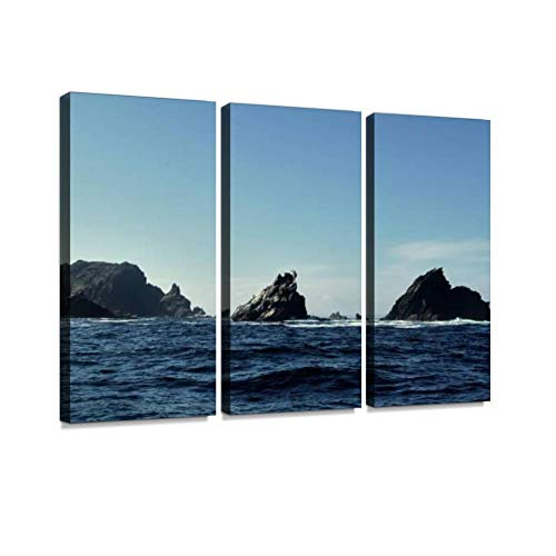 (Chile Near Punta de choros and The reserva National pinguino de humboltdt Print On Canvas Wall Artwork Modern Photography Home Decor Unique Pattern Stretched and Framed 3 Piece)