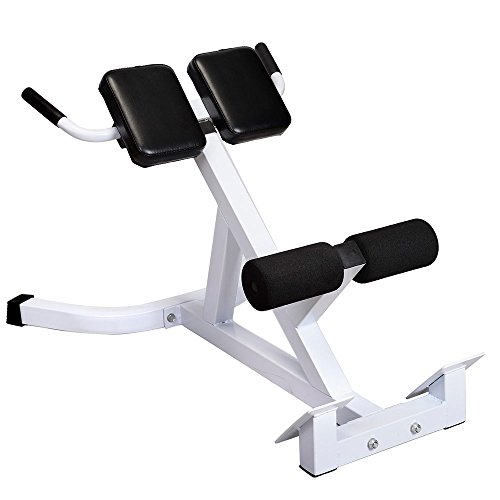 Newzeal Fitness Hyperextension Bench,Adjustable AB Bench Hyperextension Exercise Abdominal Roman Chair,N-027 Back Hyperextension Bench Roman Chair White & Black