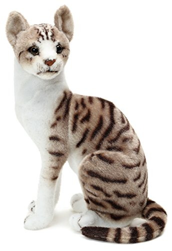 VIAHART Amy The American Shorthair Cat | 14 Inch Stuffed Animal Plush | by Tiger Tale Toys from VIAHART