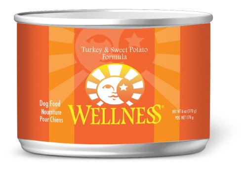 Wellness Canned Dog Food for Adult Dogs, Turkey and Sweet Potato Recipe, 6-Ounce Cans, Pack of 24, My Pet Supplies