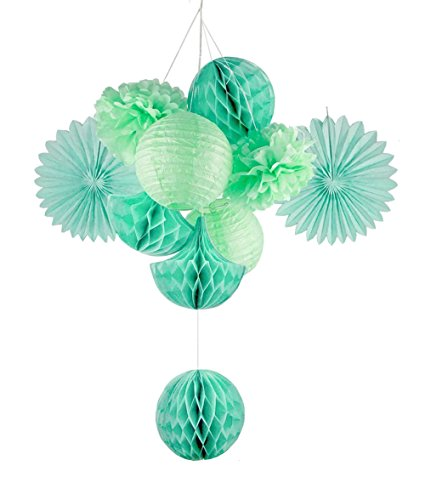 SUNBEAUTY Mint Series Mint Green Tissue Paper Pompom Paper Fan and Mint Green Paper Lanterns Honeycomb Balls Pack of 10