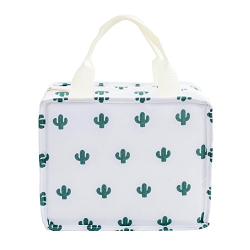 iSuperb Insulated Lunch Bag Reusable Lunch Tote Cooler Bag Waterproof Oxford Travel Picnic Lunch Box (cactus)