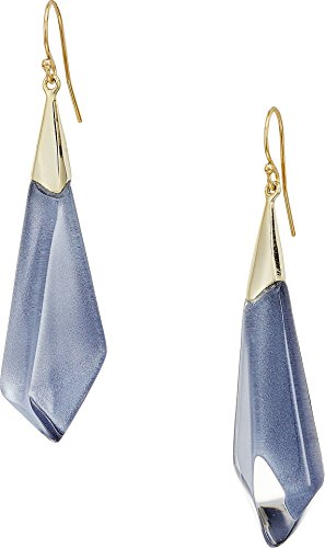 Alexis Bittar Lucite Earrings (Alexis Bittar Women's Faceted Wire Earrings Light Navy Clear One Size)