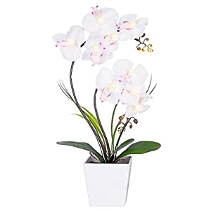 HOMESEASONS Pre-Lit Artificial Orchid Arrangement, LED Orchid Plant with 9 Lights (White, No Timer Function)