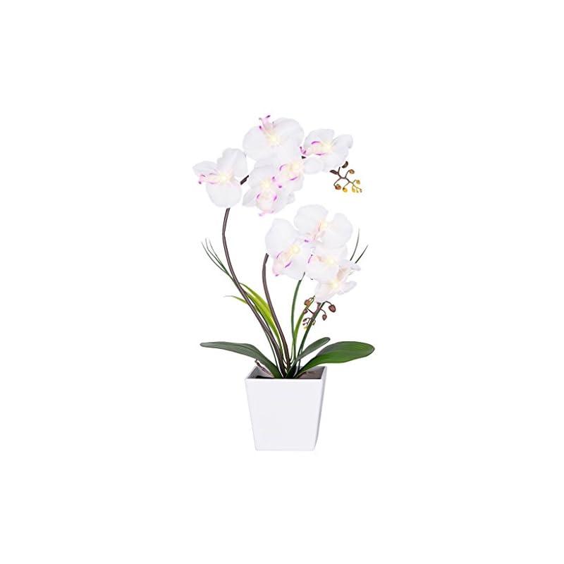silk flower arrangements homeseasons pre-lit artificial orchid arrangement, led orchid plant with 9 lights (white, no timer function)