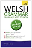 Welsh Grammar You Really Need to Know (Teach Yourself: Language)