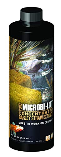 Microbe Lift 32-Ounce Pond Concentrated Extract Barley Straw MLCBSE1L (Concentrated Straw Microbe Lift Barley)