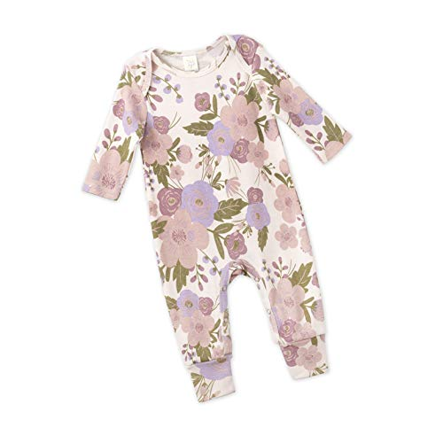 Damask Baby Girl Clothes (Tesa Babe Spring Floral Romper for Newborns, Baby Girls & Toddlers, Multi (Blushing Blooms, 6-12)