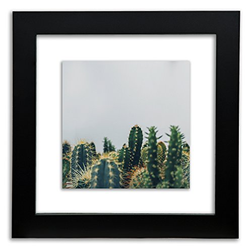 Gallery Solutions 12x12 Black Float Frame For Floating Displ