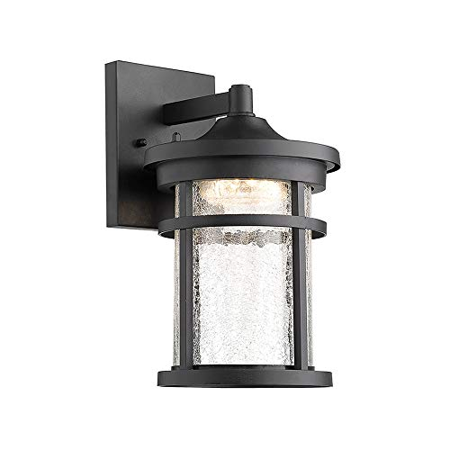 Lantern Crackle (Emliviar 1-Light Outdoor Wall Lantern LED with Crackle Glass in Black Finish, 2085B BK)