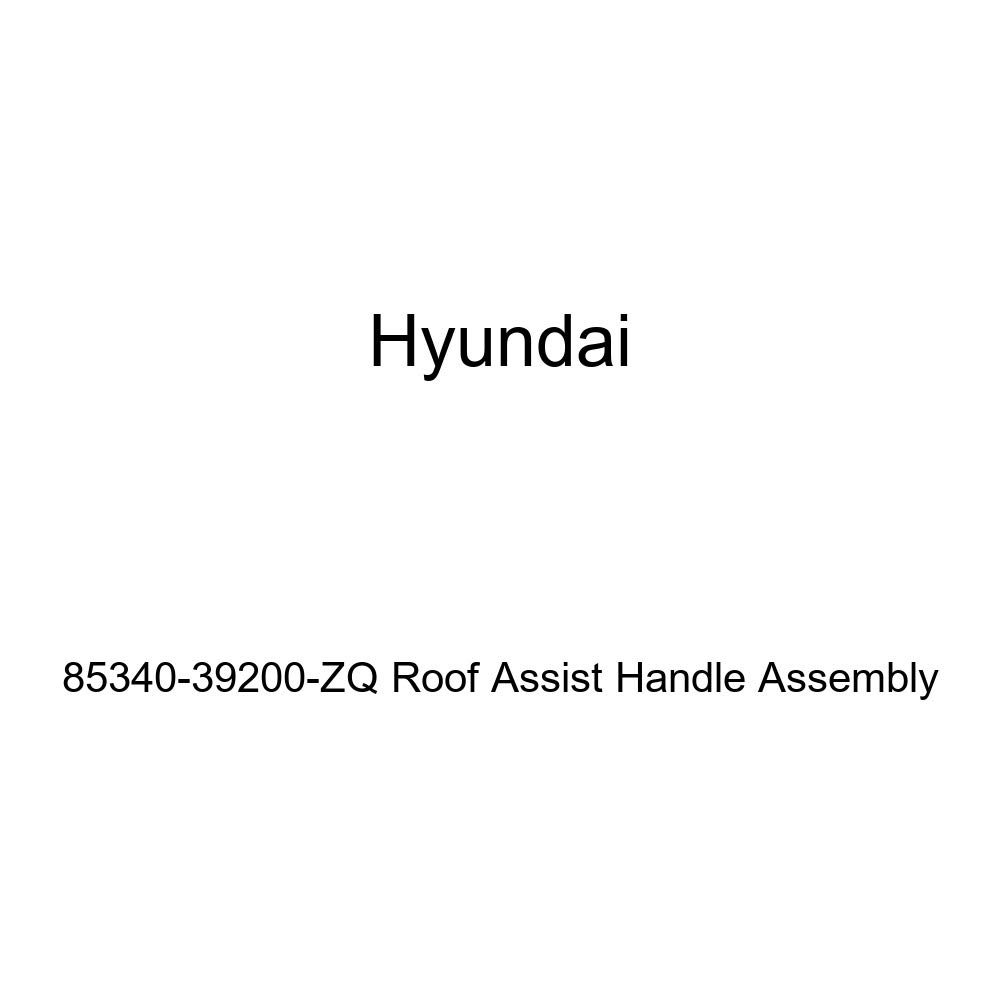 Genuine Hyundai 85340-39200-ZQ Roof Assist Handle Assembly