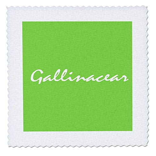 - 3dRose Kike Calvo Folklore and Traditions - White Gallinacear with Green Background - 8x8 inch Quilt Square (qs_299446_3)