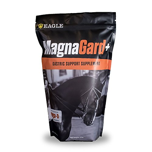 MagnaGard PLUS Gastric Support Supplement for Horses with Omega 3s, 4 lbs - Promotes Digestive Health, Provides Vital Minerals (Best Ulcer Supplement For Horses)