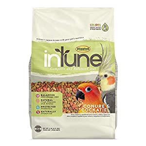 Higgins Intune Natural Food Mix for Conures & Cockatiels 37