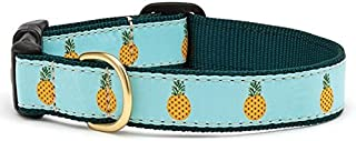 product image for Up Country Pineapple Dog Collar