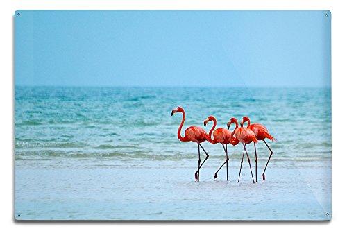 Flamingos and Ocean (12x18 Aluminum Wall Sign, Wall Decor Ready to Hang)