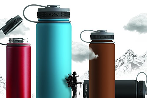 Asobu Alpine Flask Stainless Steel Insulated Thermos Water Bottle/ Beer Growler 18oz 100% BPA (Red)