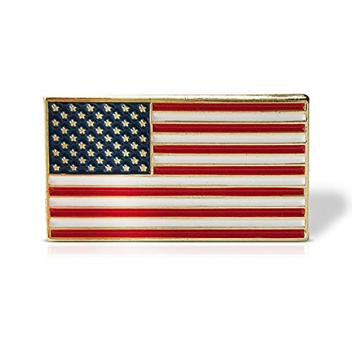 Pointy Pins American Flag USA Patriotic Lapel Pin - Gold Plated Enamel Metal Pin with Metal Back. Perfect for Suit Lapel or as a Tie Tack (Red, White and Blue Multi)